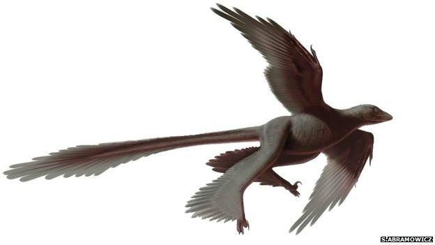 Изображение четырехкрылого динозавра