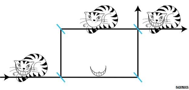 Gráfico de la paradoja del Gato de Cheshire