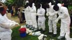 Ébola Sierra Leona