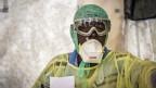 इबोला, मृतक