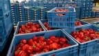 La ayuda, por valor de US$170 millones, cubrirá la producción de frutas y verduras.