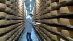 Сыроваренный завод