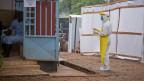Médico em Serra Leoa (Foto: AP)