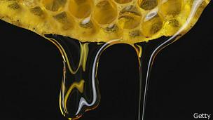 Panal y miel