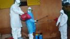 Afrika Mashariki yaweka mikakati  ya kukabiliana na homa ya Ebola