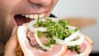 konsumsi daging, pemanasan global