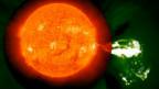 Vết lóa mặt trời (Ảnh: NASA)