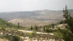 Палестинская земля
