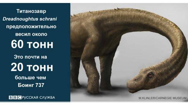 Сравнительные данные динозавра Dreadnoughtus schrani
