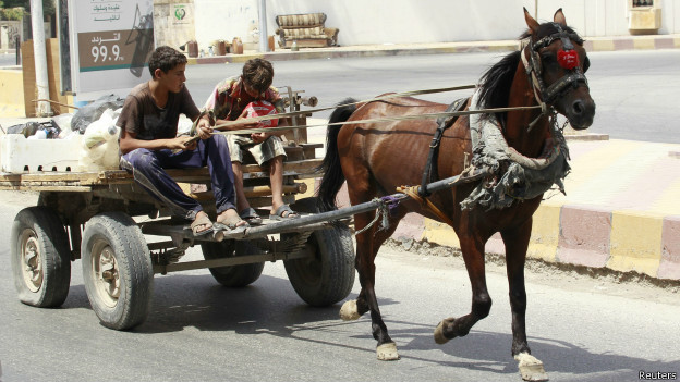 Niños en un carro a caballo en Raqqa, Siria