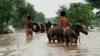 پاکستان کے صوبہ پنجاب میں سیلاب