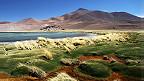 Laguna Santa Rosa, Atacama, Chile
