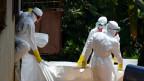 Profissionais de saúde removem corpo de vítima do ebola na Libéria   Foto: AFP