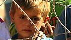 Niño refugiado kurdo que cruzó desde Siria a Turquía