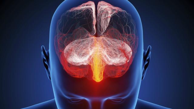¿Son realmente tan diferentes los cerebros de hombres y mujeres?