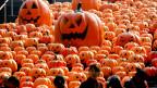 Penduduk Beijing dilarang pakai kostum Halloween di kereta bawah tanah