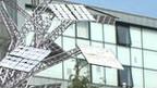panel surya, pohon panel surya, energi alternatif