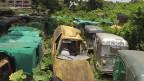 ঢাকার ডাম্পিং স্টেশন: গাড়ির সমাধিস্থল
