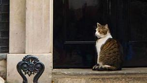 """""""لاري"""" پیسو د بریتانیا لومړي وزیر له استوګنځي 'نه وځي'"""