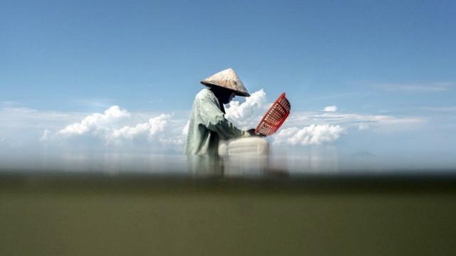 د عکسونو البوم: د کمبودیا ساحلونو کې د کب نیونکو ټولنه